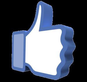 Social Media Marketing   Branding Iron Marketing, LLC   Bozeman, MT